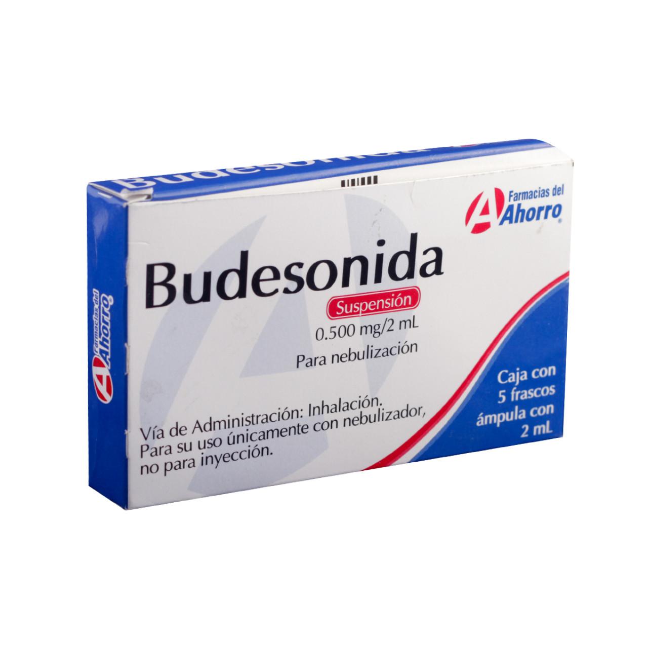 Budesonida Para Que Sirve Dosis Formula Y Generico
